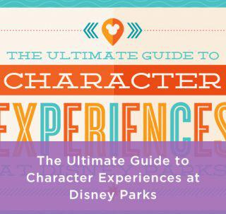 Disney Character Experience