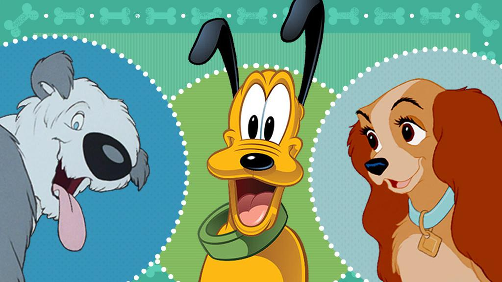 pup quiz how well do you know disney dogs disney® credit cards