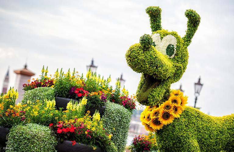 Pluto as a bush in Epcot