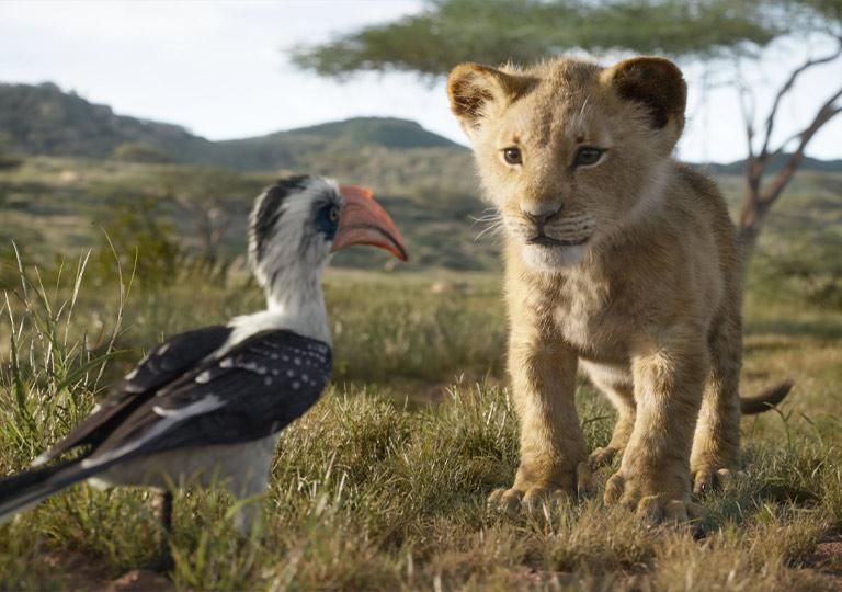 Simba and Zazu