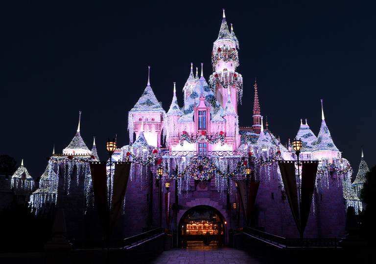 Disney Holiday Sleeping Beauty Castle