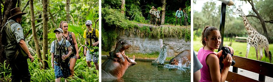 Disney Wild Africa Trek